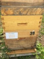 Parrainade de ruches 2017