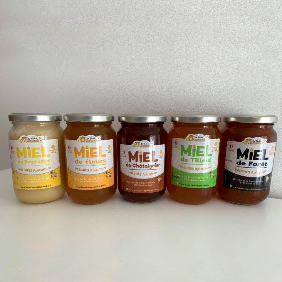 Récolte miel de ruche parrainée Ile de France