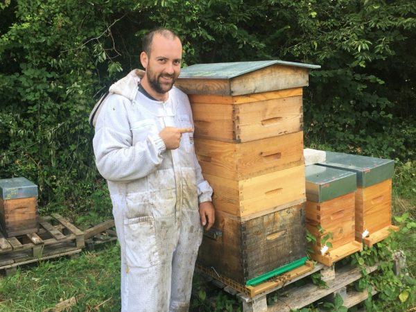 Ruches d'abeilles pour miel, apiculteur dans les Yvelines